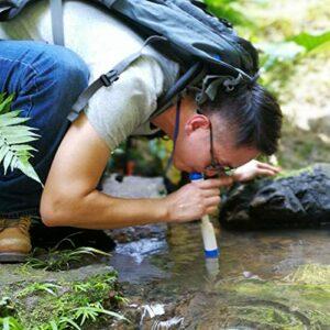 DAUERHAFT Paille de purificateur d'eau en Plastique de qualité Alimentaire ABS avec Fonction de récupération d'eau sous Pression Paille de Purification d'eau, pour Le Camping
