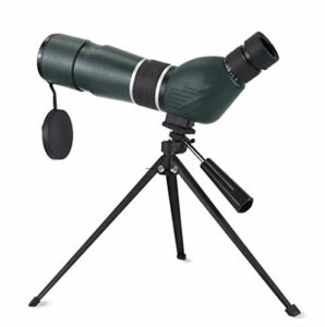 FENGTING Jumelles de télescope 8 x 30 Jumelles de télescope Télescope Télescope étanche Télescope antidécope antidérapant pour l'oiseau Regarder Camping Concert