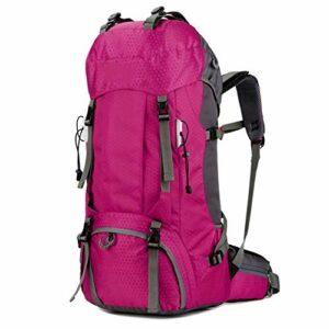 Sac à Dos de randonnée 60L, Sac de Voyage en Plein air pour Le Sport en Plein air pour l'escalade du Camping, randonnée en Montagne, Sac à Dos Haute Performance,Pink