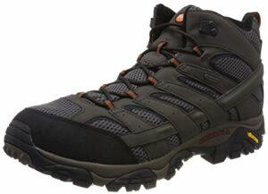 Merrell Moab 2 Mid GTX, Chaussures de Randonnée Hautes Homme, Gris (Beluga), 44 EU